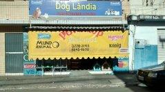 DOG LANDIA - CABEDELO - PB