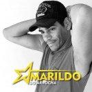 AMARILDO DO ARROCHA - CANTOR/COMPOSITOR
